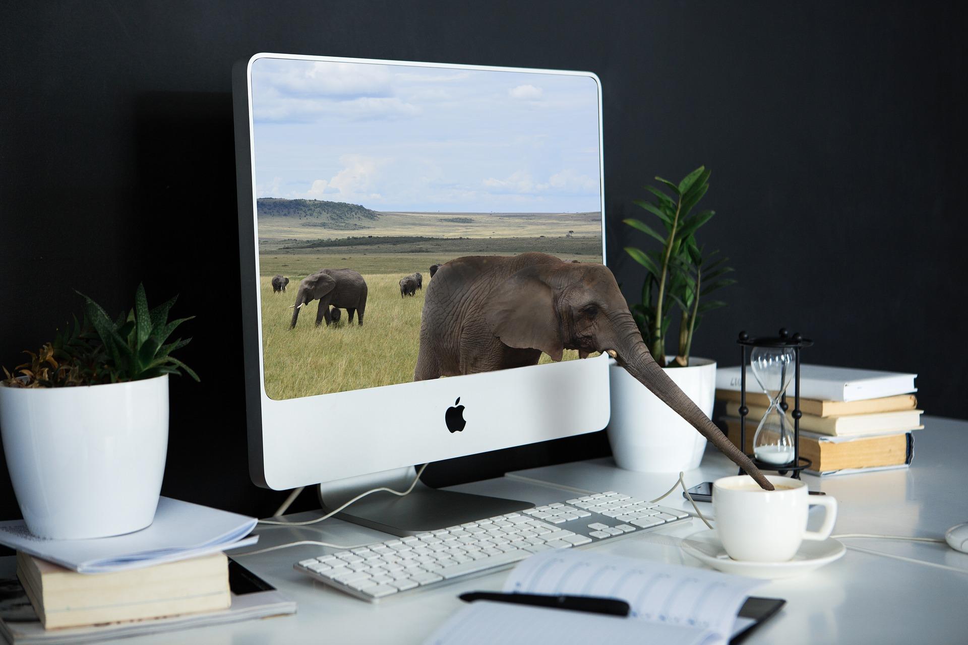 bureau ergonomique freelance